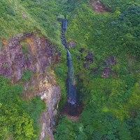 山のスペシャリストが紹介する、八丈島の自然!