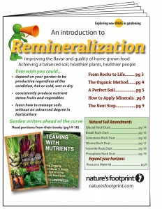 Remineralization_Cover v1