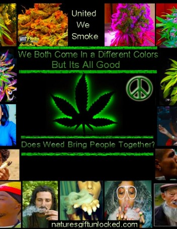 Marijuana Legal In Washington D.C.