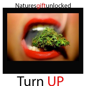 marijuana test
