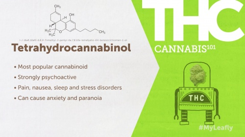 What Is THC & What Are The Health Benefits