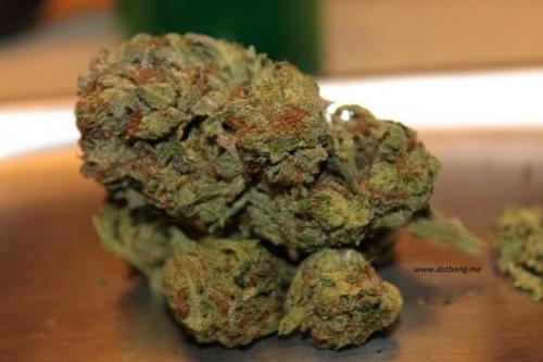 marijuana in tennessee