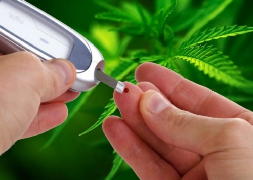 marijuana and diabetes