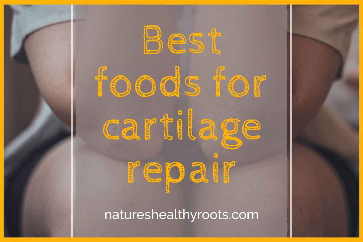 Best Foods For Cartilage Repair And Healthy Joints