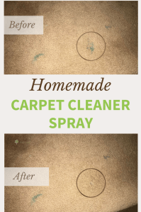 Homemade Carpet Cleaner Solution and Spray for Tough Stains