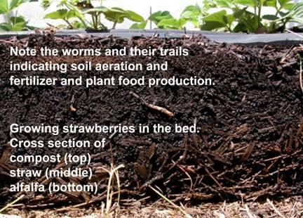 Natureu0027s Organic Garden System
