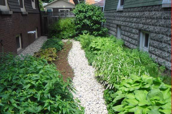 dry stream beds gain momentum