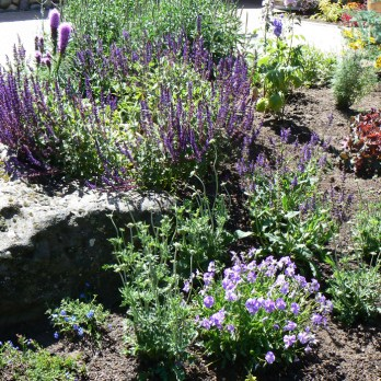 xeriscape landscape design in Central Oregon by Nature's Plan LLC