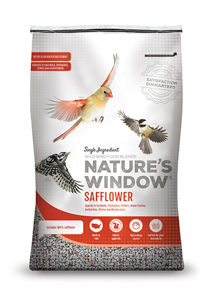 Image of Nature's Window Safflower - Front View