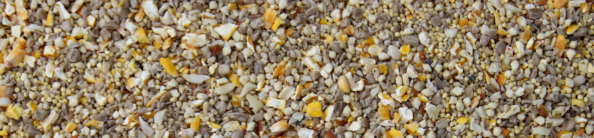 Image of no waste wild bird food.
