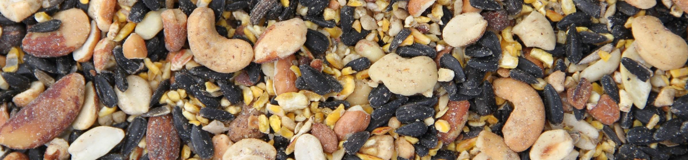 Image of woodpecker wild bird food