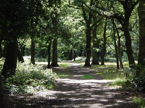 Tooting.Streatham Woods
