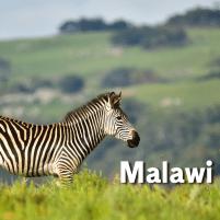 YMA--Malawi-Africa
