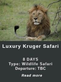 Luxury-Kruger