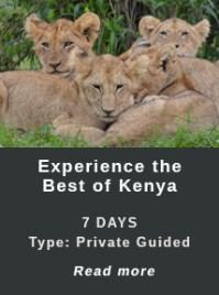 Best-of-Kenya