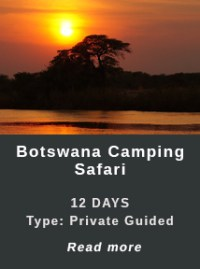 Boyswana-Camping-Safari