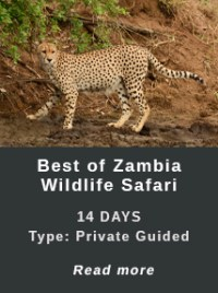 travel-to-zambia