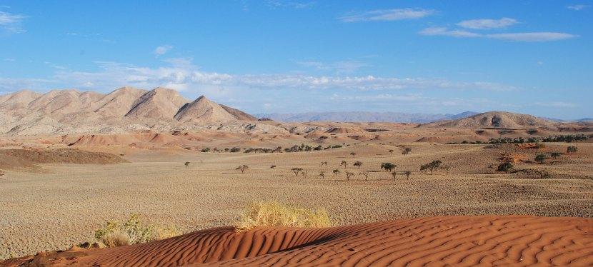 Best of Namibia Safari