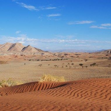 Namib-Desert-(1)