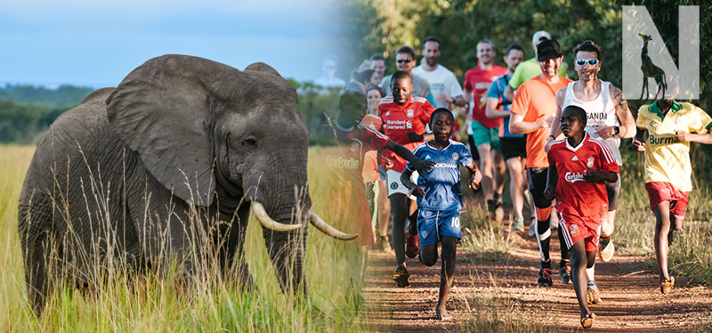 Uganda Marathon and Gorilla, Wildlife Experience