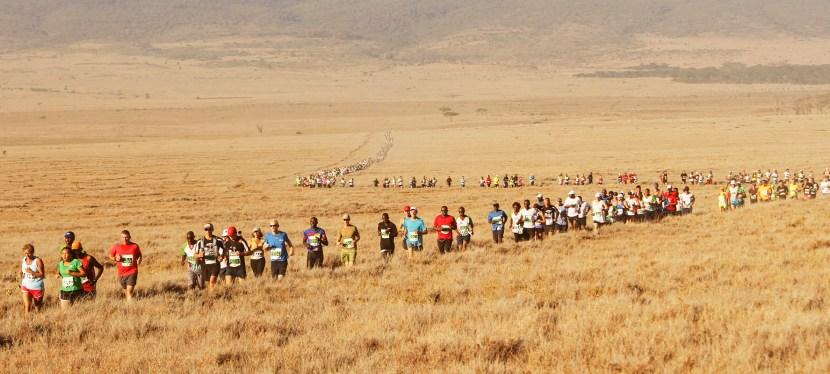 Lewa Safari Marathon & Kenya Wildlife Safari
