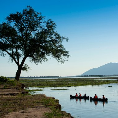 Canoe-safari-in-Mana-Pools-(3)