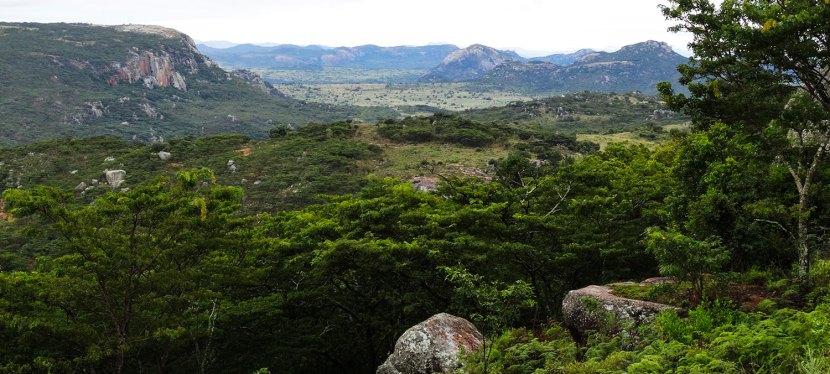 Zimbabwe Country Information