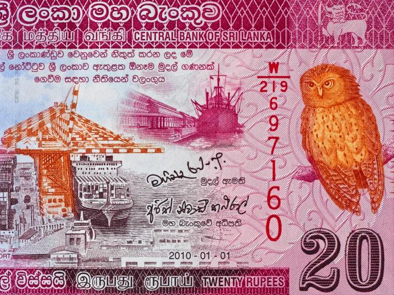 Sri Lanka 20 rupee note with Serendib Scops Owl.jpg