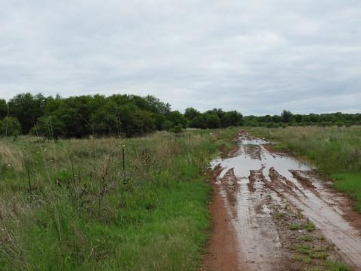 Crake Road