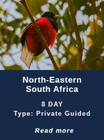North-East-SA