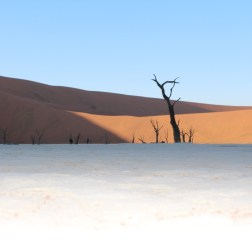 Visit Sossusvlei with Nature Travel Namibia