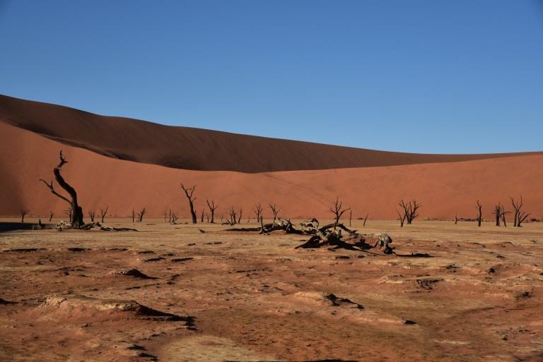 Namib-Naukluft Park (1).JPG