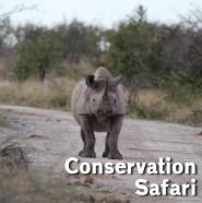 YMA-Conservation.jpg