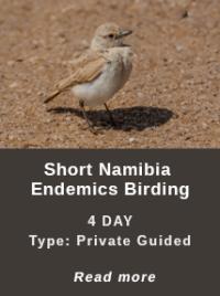 Short-Namibia-Endemics