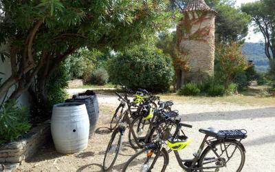 Cyclotourisme et œnotourisme !
