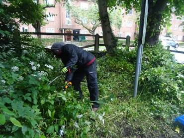 Kingihts Hill Wood - Capital Clean Up-4