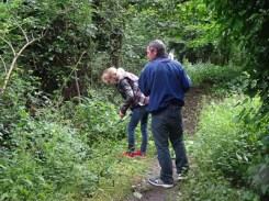 Kingihts Hill Wood - Capital Clean Up day-3