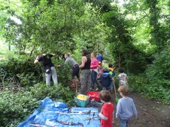 Kingihts Hill Wood - Capital Clean Up day-7