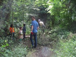 Knights Hill Wood Capital Clean Up 27-6-16 Lambeth Nature conservation Home education free family activity