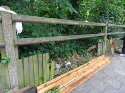 Knights Hill Wood Capital Clean Up 27-6-16 Lambeth Nature conservation woodland fence Home education free activity