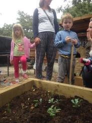 Young children planting organic veg