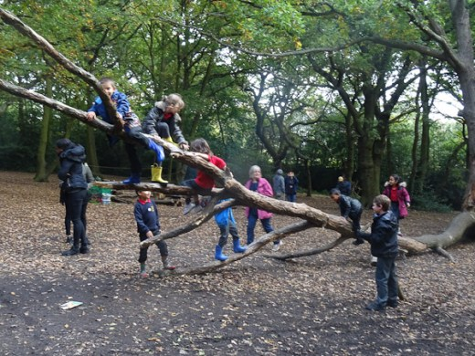 granton-primary-free-nature-school-forest-school-lambeth-13