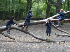 granton-primary-free-nature-school-forest-school-streatham-common-lambeth-16