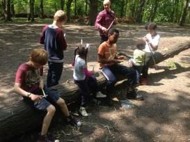 children woodcraft woodland