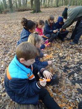 free-forest-school-activity-for-primary-school-children-on-streatham-common-lambeth-16
