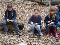 free-forest-school-activity-for-primary-school-children-on-streatham-common-lambeth-7