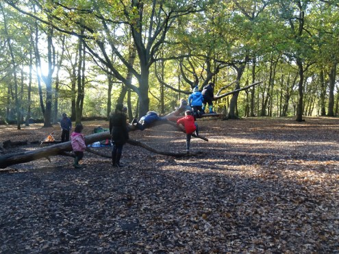 free-forest-school-activity-for-primary-school-streatham-common-lambeth-12