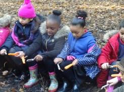 free-forest-school-activity-for-primary-school-streatham-common-lambeth-7