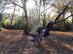 free-forest-school-activity-for-primary-school-students-streatham-common-lambeth-2
