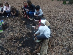 last-free-forest-school-activity-for-primary-school-children-on-streatham-common-lambeth-27